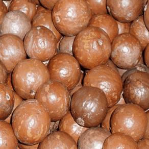 Macadamia-com-Casca-100g