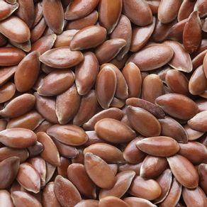 semente-marrom