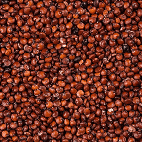 quinoa-vermelha