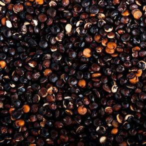 quinoa-preta1