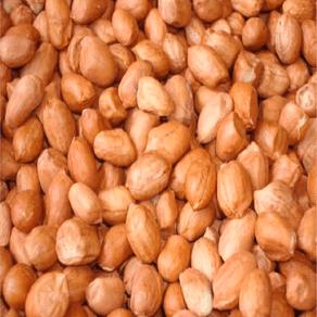 Amendoim-Runner-Sem-Casca-Cru-500g