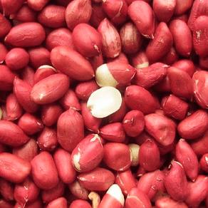Amendoim-HPS-Vermelho-Cru-500g