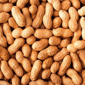 Amendoim-HPS-Com-Casca-Cru-500g
