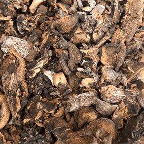 Funghi-Seco-100g