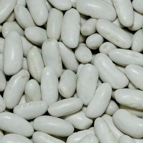 feijao-branco-500