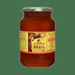 mel-flor-de-laranjeira800g-emp