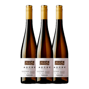 Kit-Vinho-Organico-Adobe-Gewurztraminer-750ml