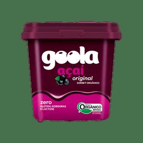 Acai-Original-Organico-500ml-Goola